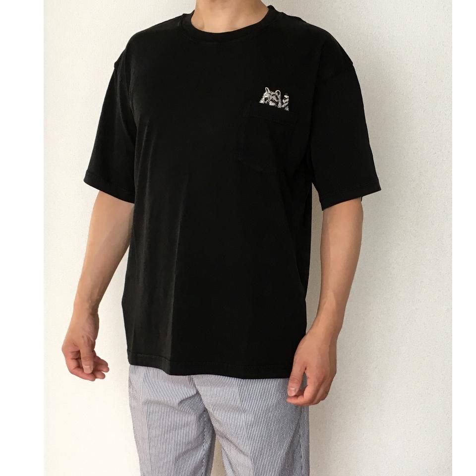 のぞくアライグマ刺繍Tシャツ着用斜め前