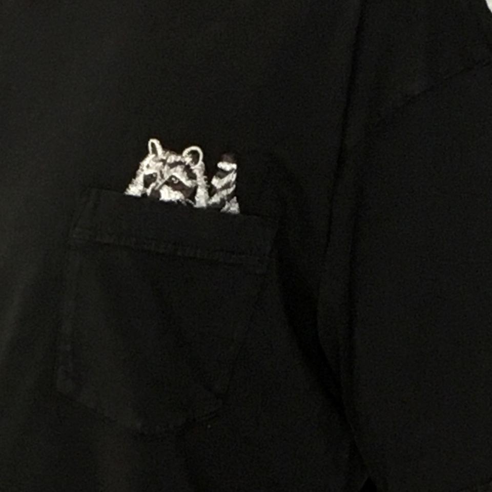 のぞくアライグマ刺繍Tシャツ着用ポケットアップ