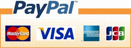 PayPal(ペイパル)のロゴ