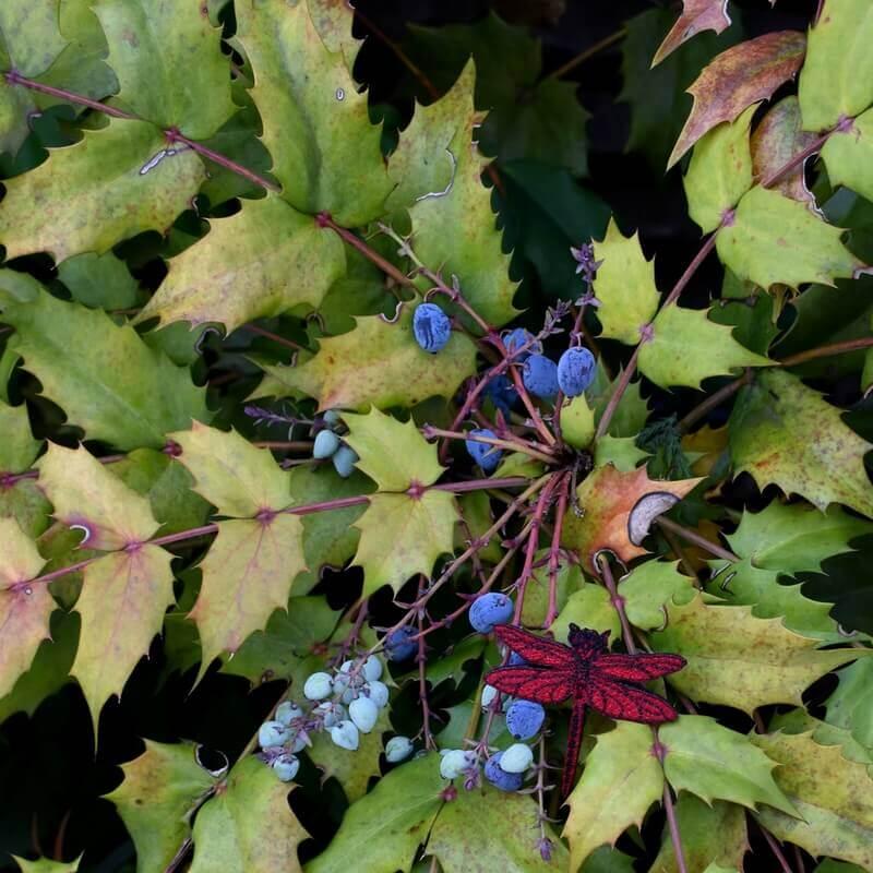 トンボ刺繍ブローチ木の上