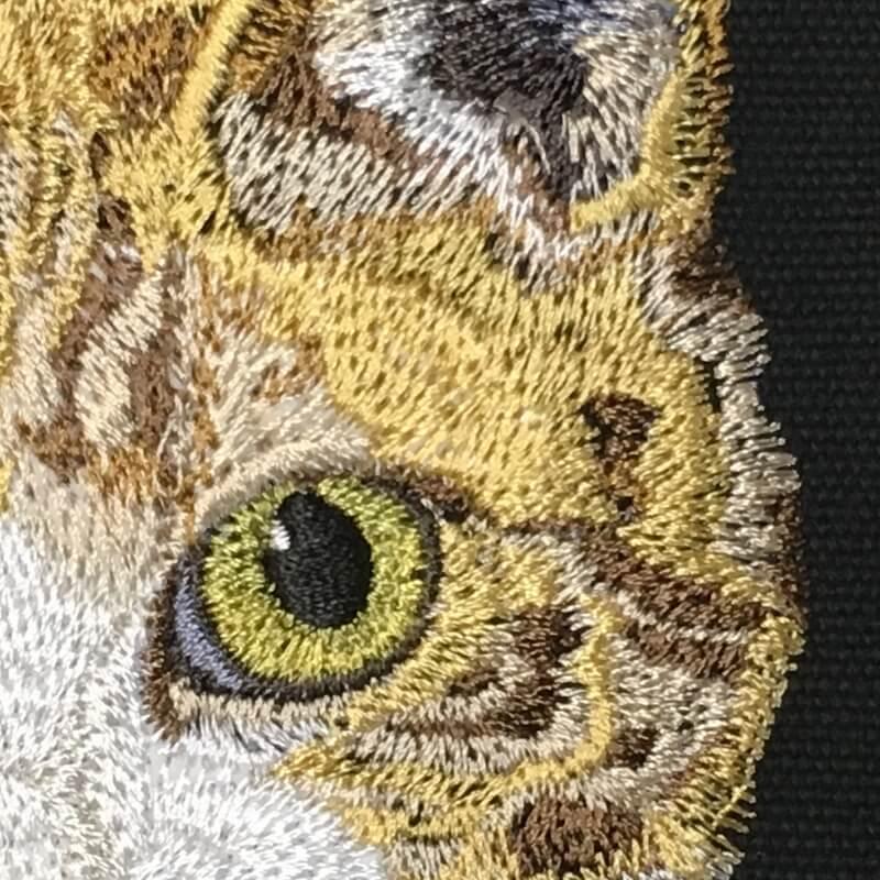 2018gallery-吉祥寺猫祭り-41